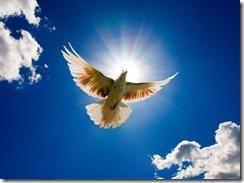 holy spirite